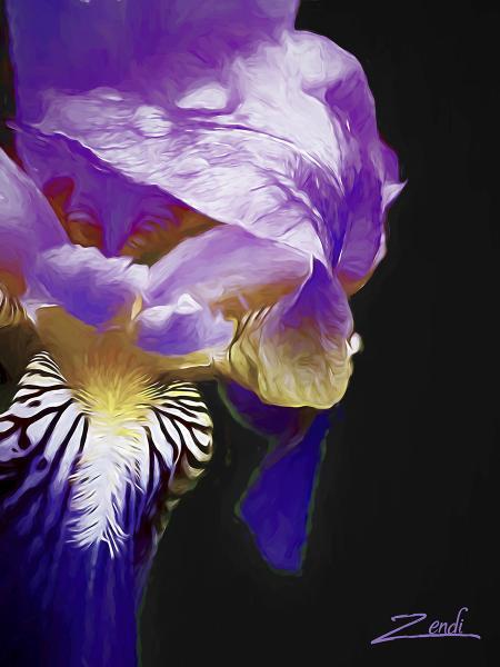 Cindy Greenstein, Iris